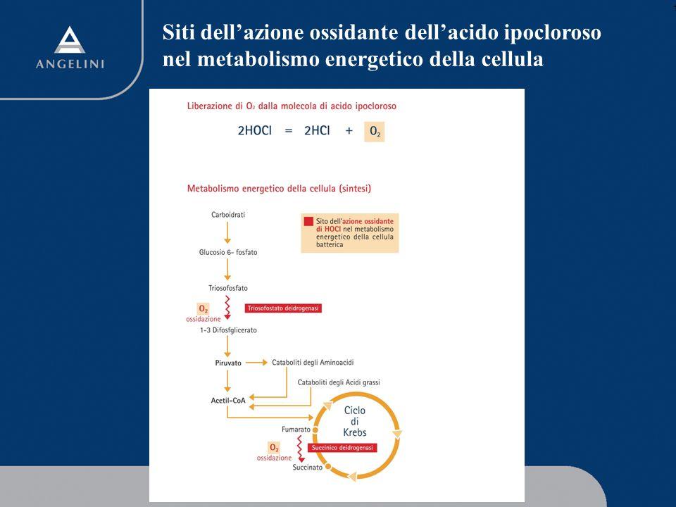 Siti dell'azione ossidante dell'acido ipocloroso