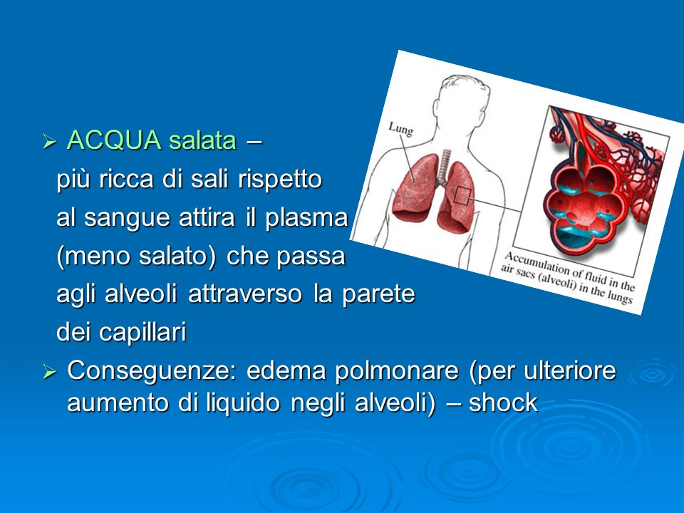 ACQUA salata – più ricca di sali rispetto. al sangue attira il plasma. (meno salato) che passa. agli alveoli attraverso la parete.