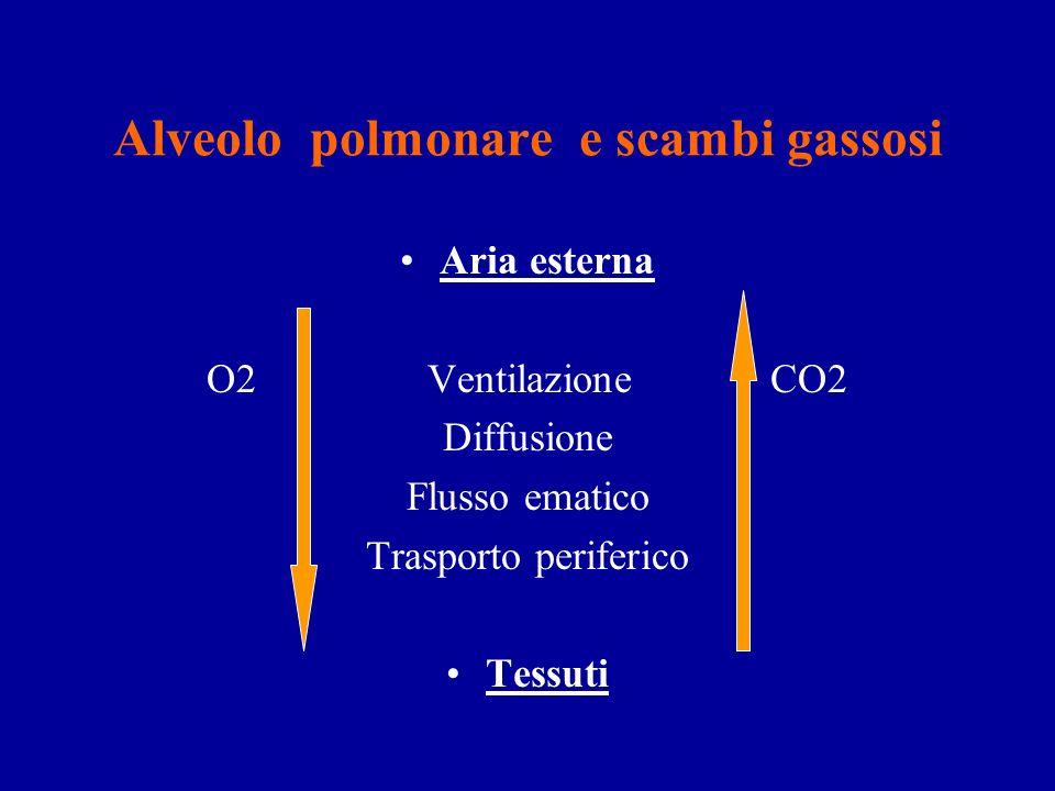 Alveolo polmonare e scambi gassosi