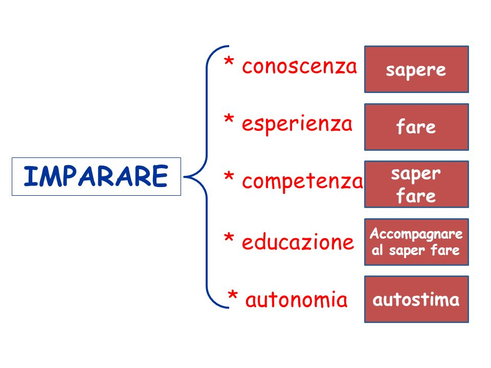 IMPARARE * conoscenza * esperienza * competenza * educazione