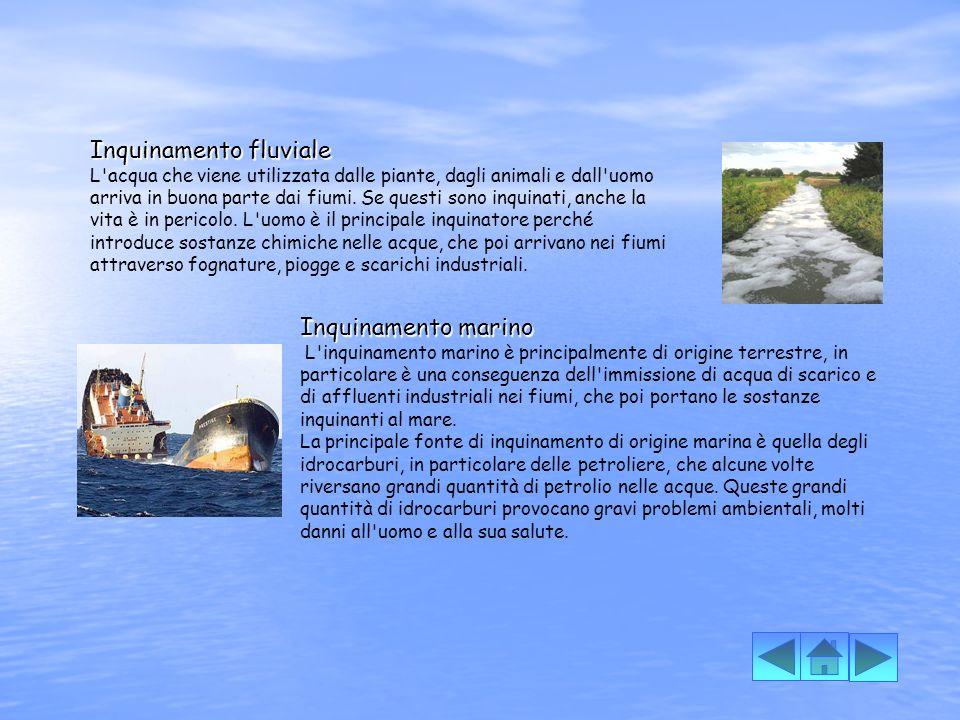 Inquinamento fluviale
