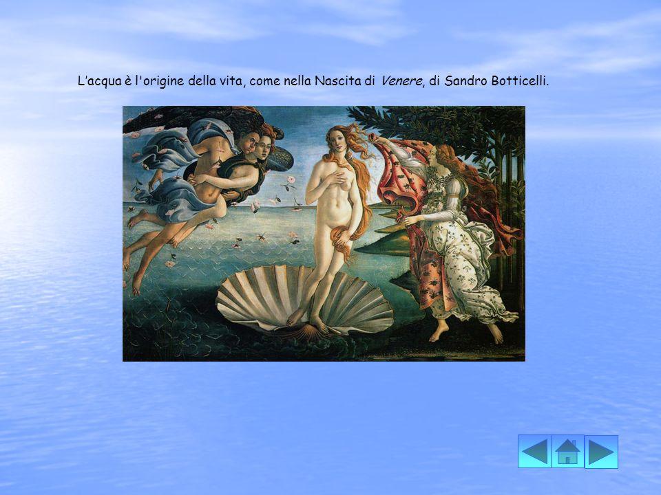 L'acqua è l origine della vita, come nella Nascita di Venere, di Sandro Botticelli.