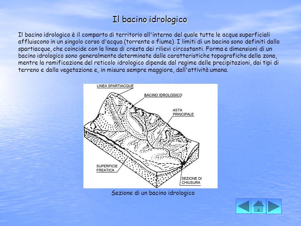 Sezione di un bacino idrologico