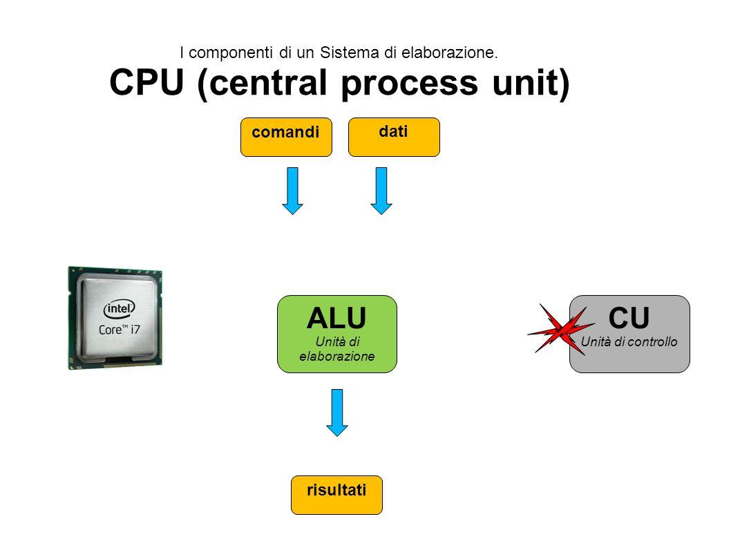 CPU (central process unit)