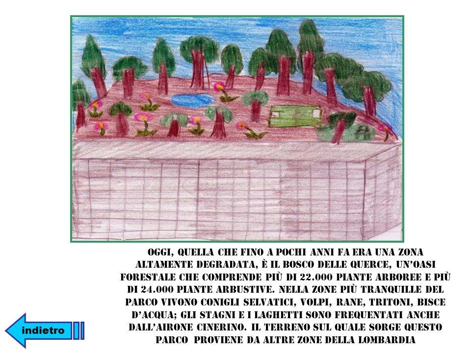 Oggi, quella che fino a pochi anni fa era una zona altamente degradata, è il Bosco delle Querce, un'oasi forestale che comprende più di 22.000 piante arboree e più di 24.000 piante arbustive. Nella zone più tranquille del parco vivono conigli selvatici, volpi, rane, tritoni, bisce d'acqua; gli stagni e i laghetti sono frequentati anche dall'airone cinerino. Il terreno sul quale sorge questo parco proviene da altre zone della Lombardia
