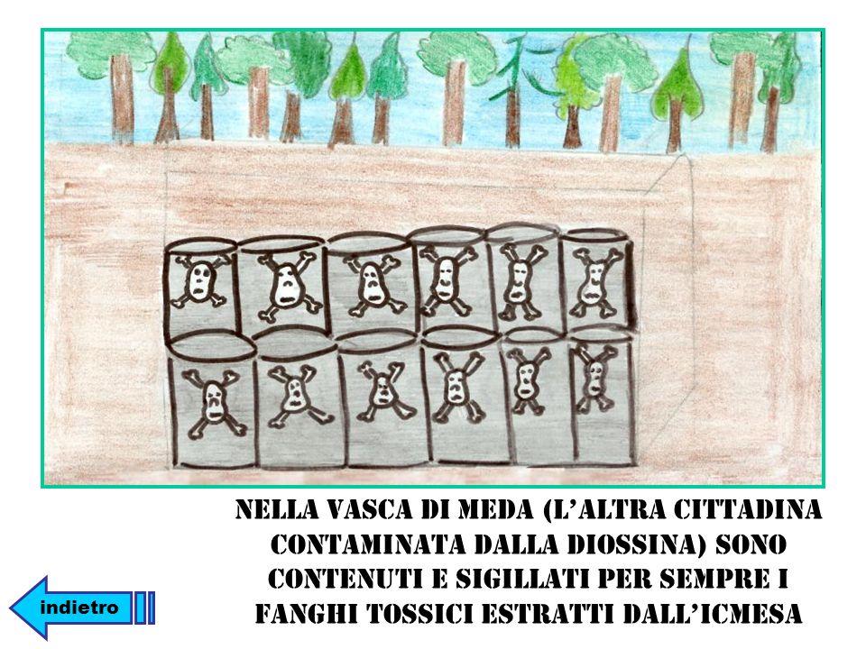 Nella vasca di Meda (l'altra cittadina contaminata dalla diossina) sono contenuti e sigillati per sempre i fanghi tossici estratti dall'ICMESA