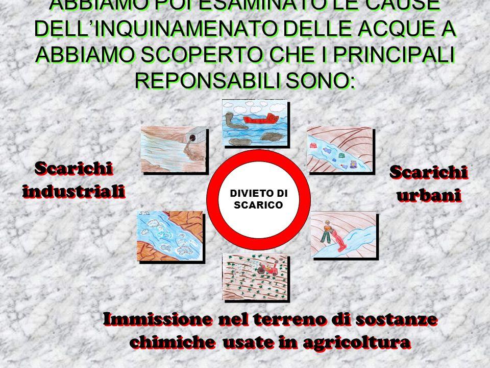 Immissione nel terreno di sostanze chimiche usate in agricoltura