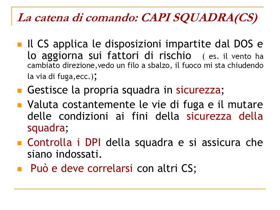 La catena di comando: CAPI SQUADRA(CS)