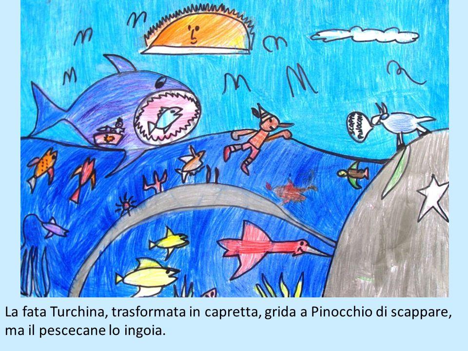 La fata Turchina, trasformata in capretta, grida a Pinocchio di scappare, ma il pescecane lo ingoia.