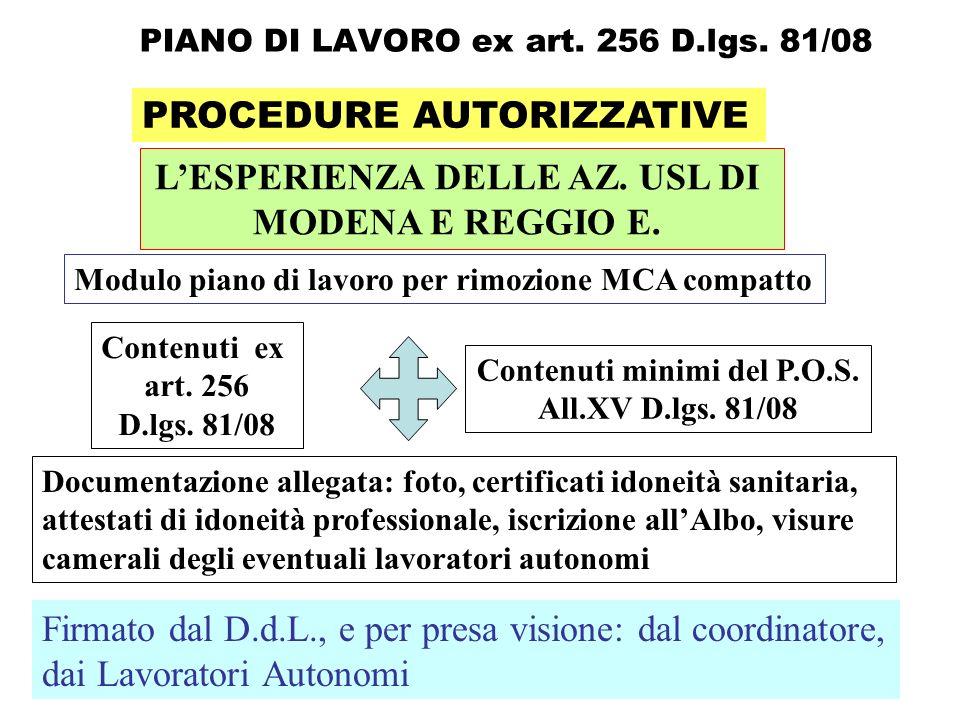 PIANO DI LAVORO ex art. 256 D.lgs. 81/08