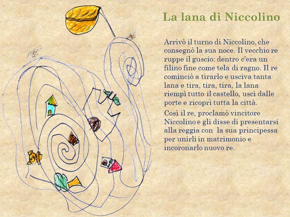 La lana di Niccolino