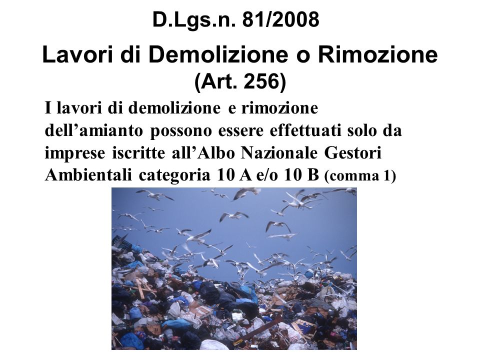 Lavori di Demolizione o Rimozione (Art. 256)