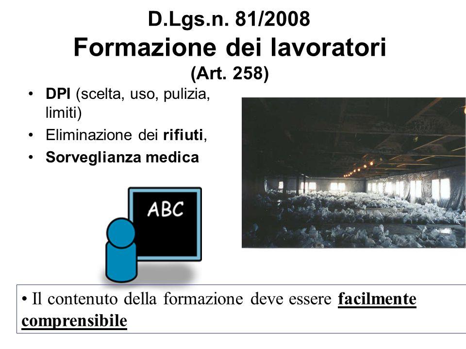 Formazione dei lavoratori (Art. 258)