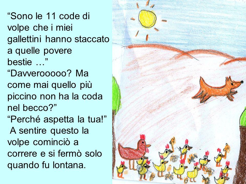 Sono le 11 code di volpe che i miei gallettini hanno staccato a quelle povere bestie … Davverooooo.