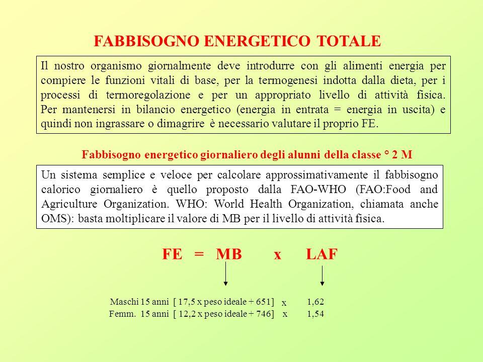 FABBISOGNO ENERGETICO TOTALE