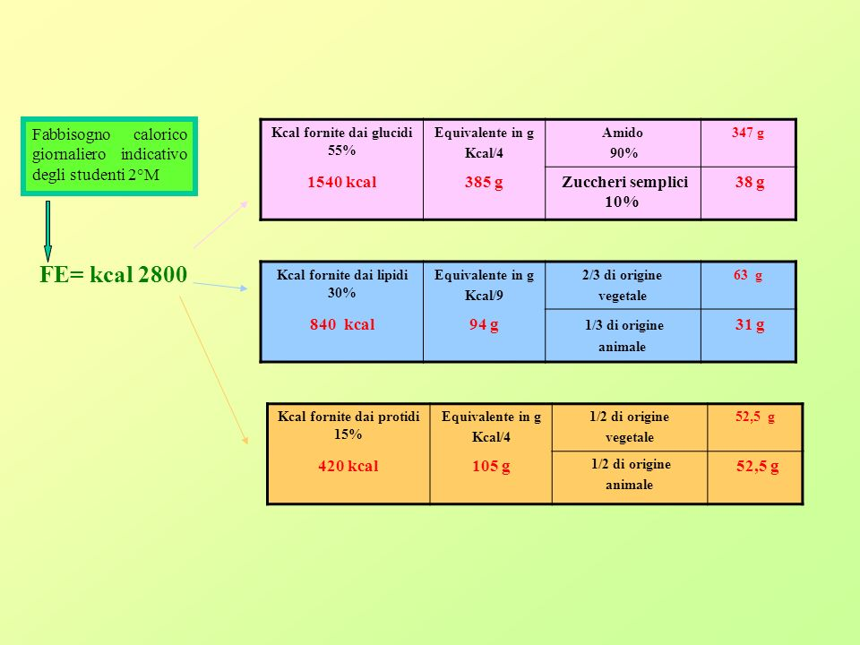 Fabbisogno calorico giornaliero indicativo degli studenti 2°M