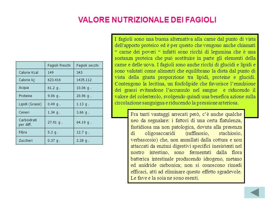VALORE NUTRIZIONALE DEI FAGIOLI