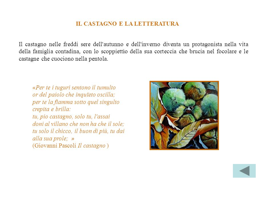 IL CASTAGNO E LA LETTERATURA