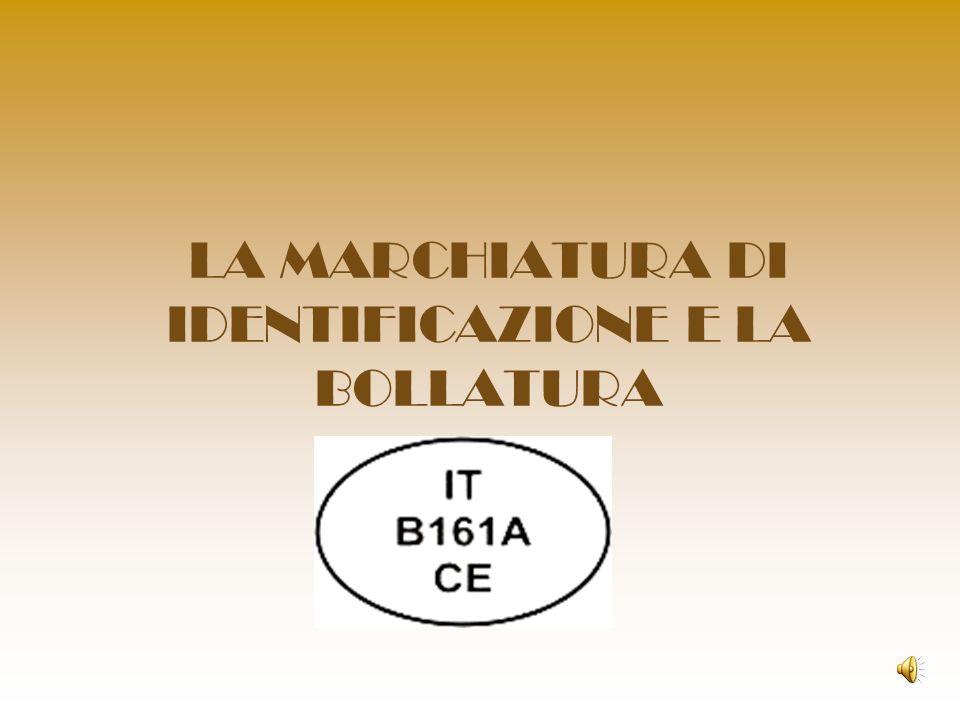LA MARCHIATURA DI IDENTIFICAZIONE E LA BOLLATURA