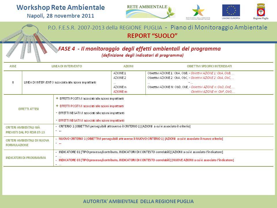 FASE 4 - Il monitoraggio degli effetti ambientali del programma