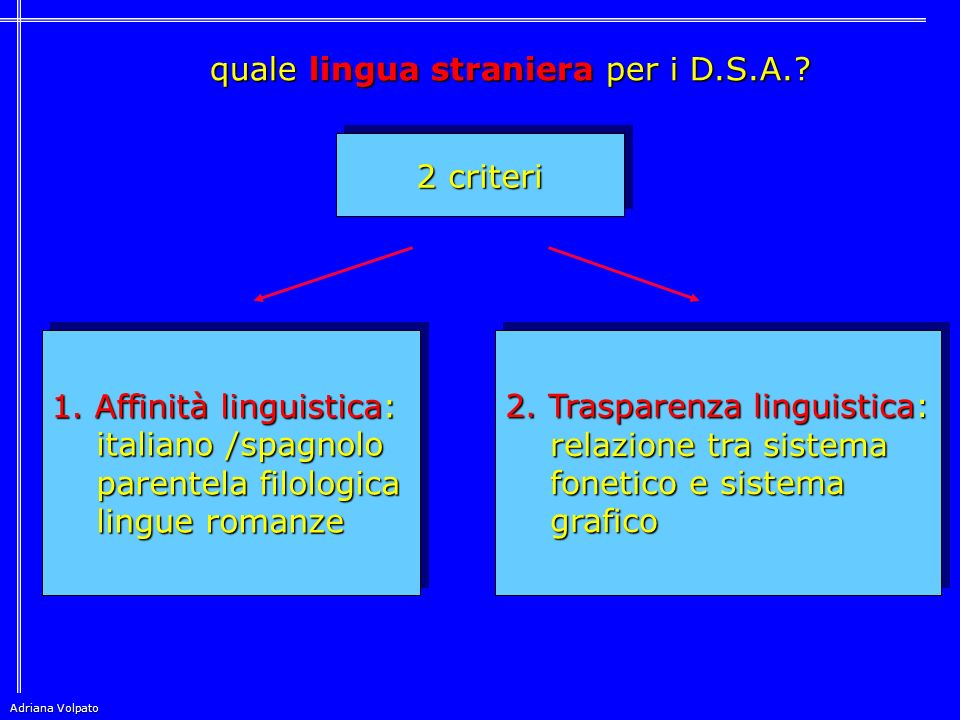 quale lingua straniera per i D.S.A.