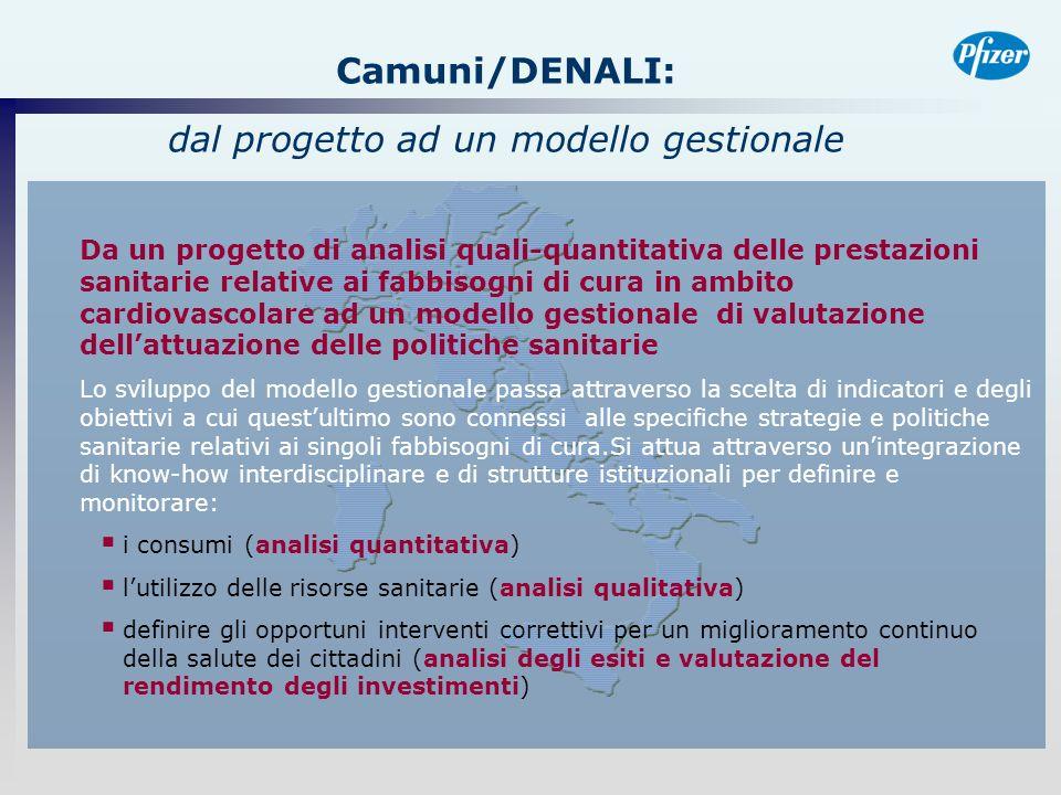 Camuni/DENALI: dal progetto ad un modello gestionale