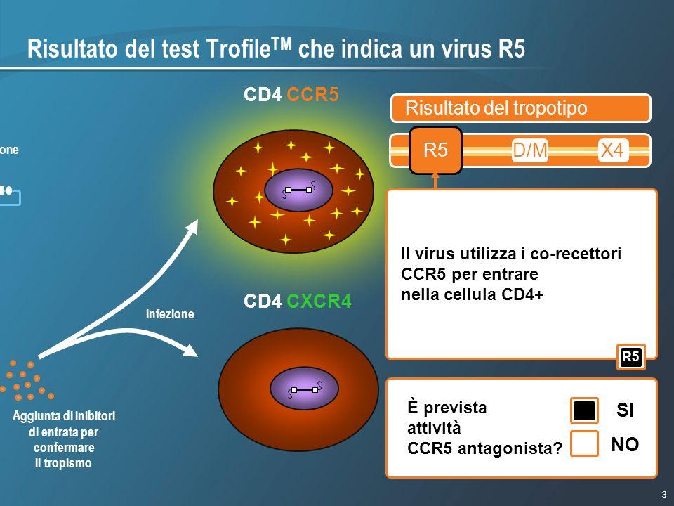 Risultato del test TrofileTM che indica un virus R5