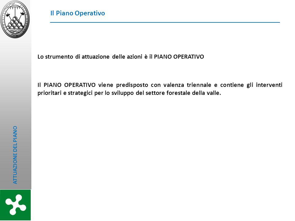 Il Piano Operativo Lo strumento di attuazione delle azioni è il PIANO OPERATIVO.