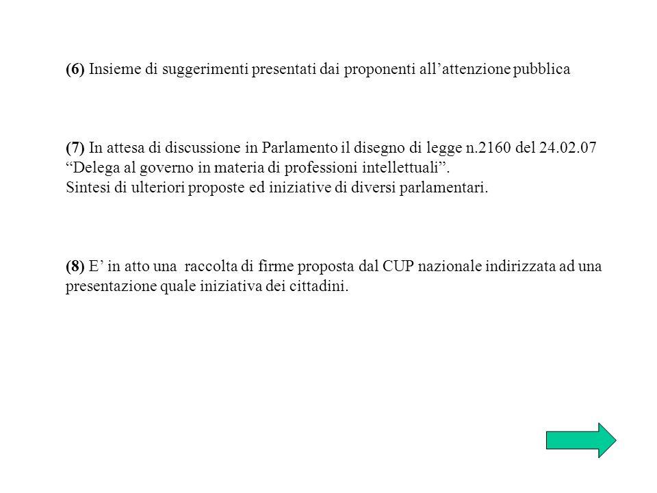 (6) Insieme di suggerimenti presentati dai proponenti all'attenzione pubblica