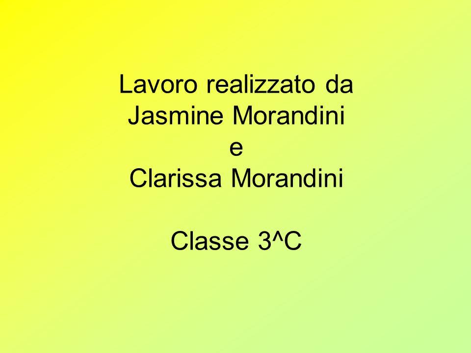 Lavoro realizzato da Jasmine Morandini e Clarissa Morandini Classe 3^C