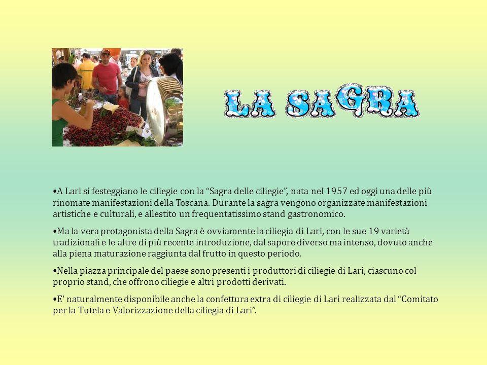 A Lari si festeggiano le ciliegie con la Sagra delle ciliegie , nata nel 1957 ed oggi una delle più rinomate manifestazioni della Toscana. Durante la sagra vengono organizzate manifestazioni artistiche e culturali, e allestito un frequentatissimo stand gastronomico.