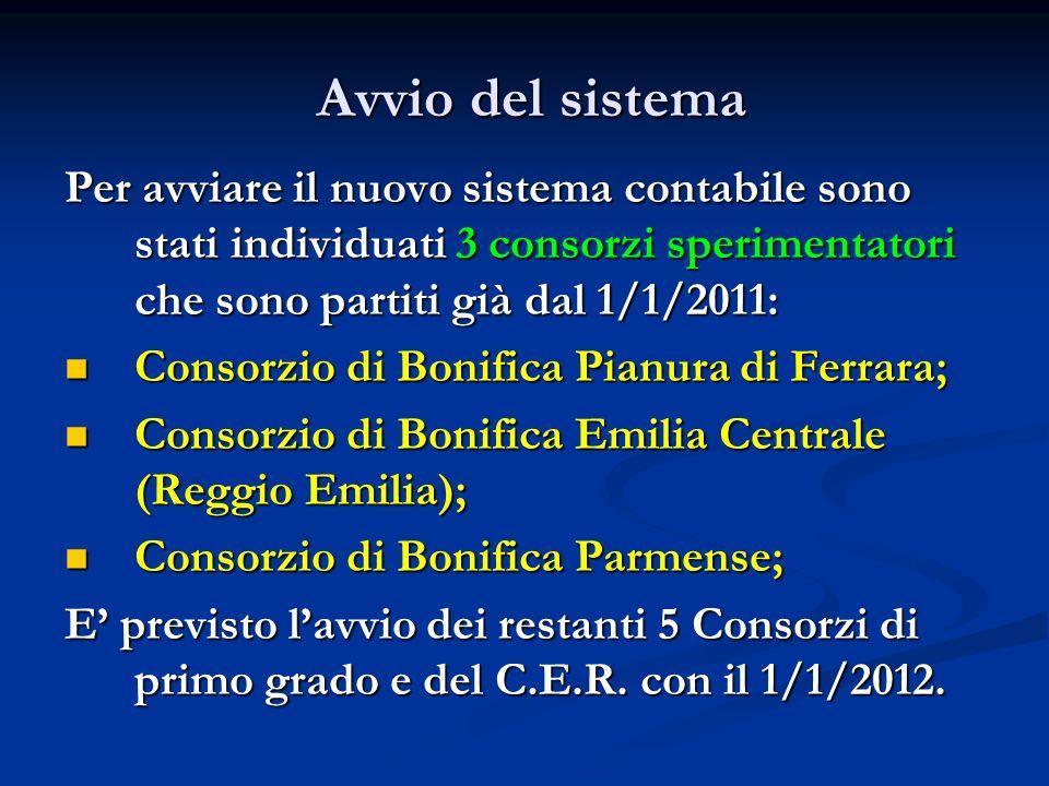 Avvio del sistema Per avviare il nuovo sistema contabile sono stati individuati 3 consorzi sperimentatori che sono partiti già dal 1/1/2011: