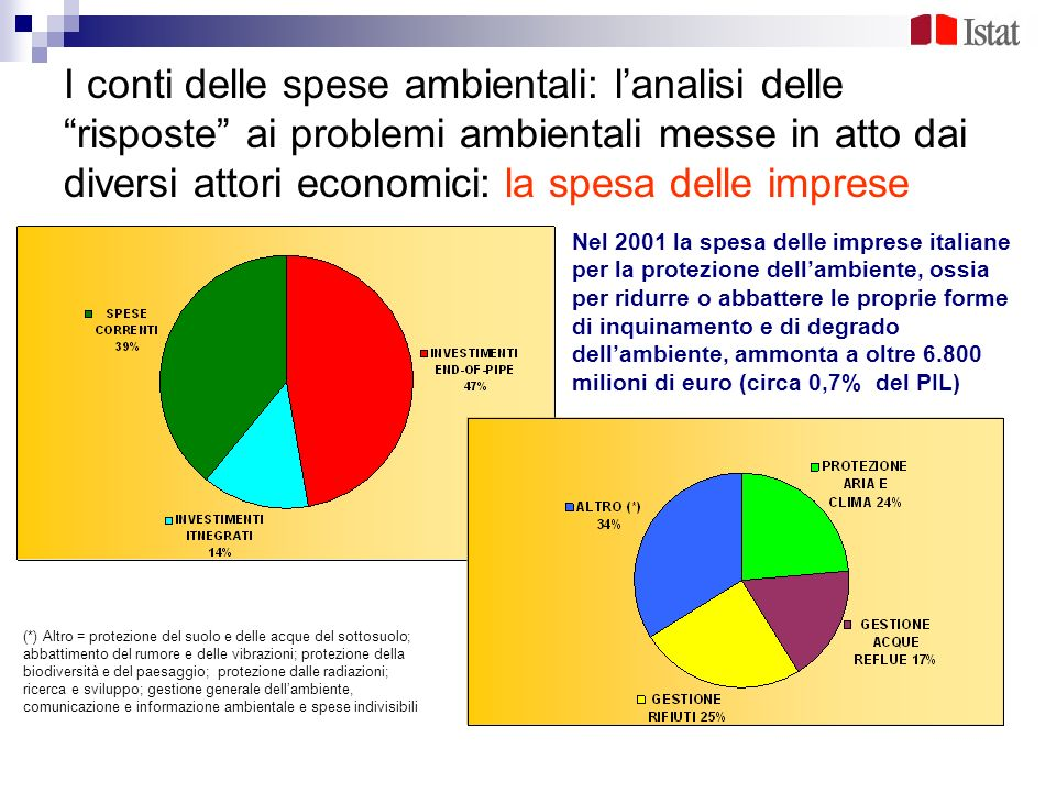 I conti delle spese ambientali: l'analisi delle risposte ai problemi ambientali messe in atto dai diversi attori economici: la spesa delle imprese