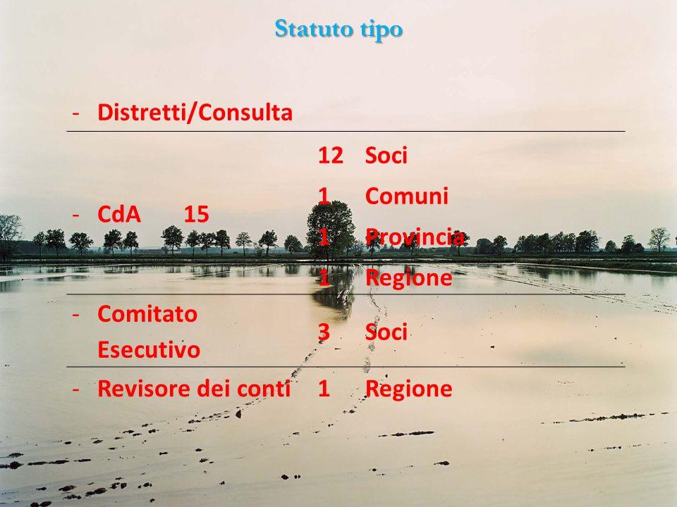 Statuto tipo Distretti/Consulta. CdA 15. 12. Soci. 1. Comuni. Provincia. Regione. Comitato Esecutivo.