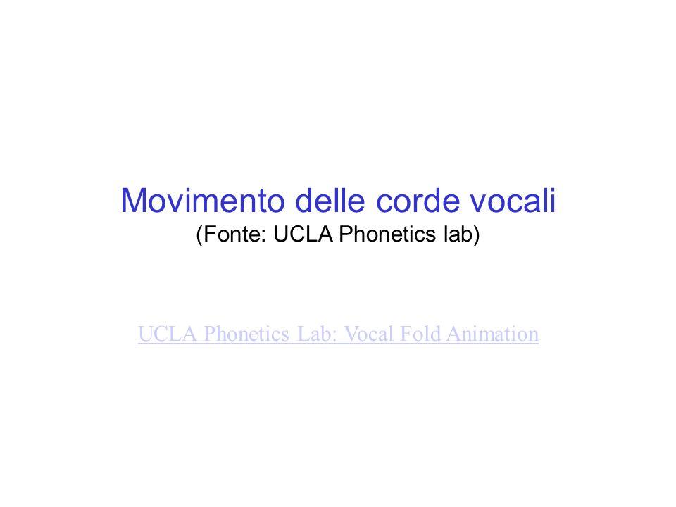 Movimento delle corde vocali