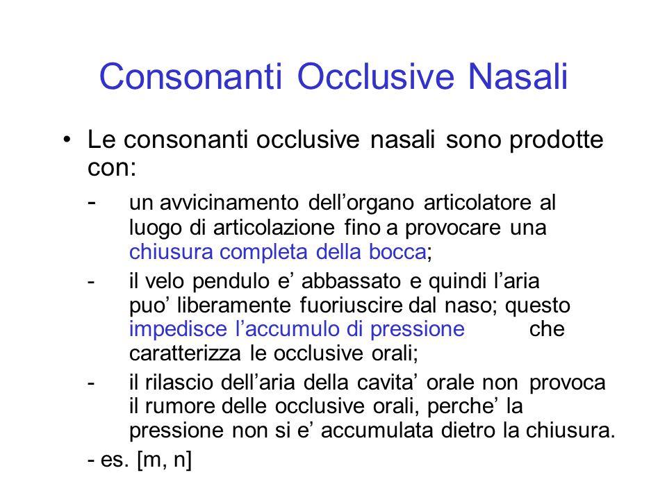 Consonanti Occlusive Nasali