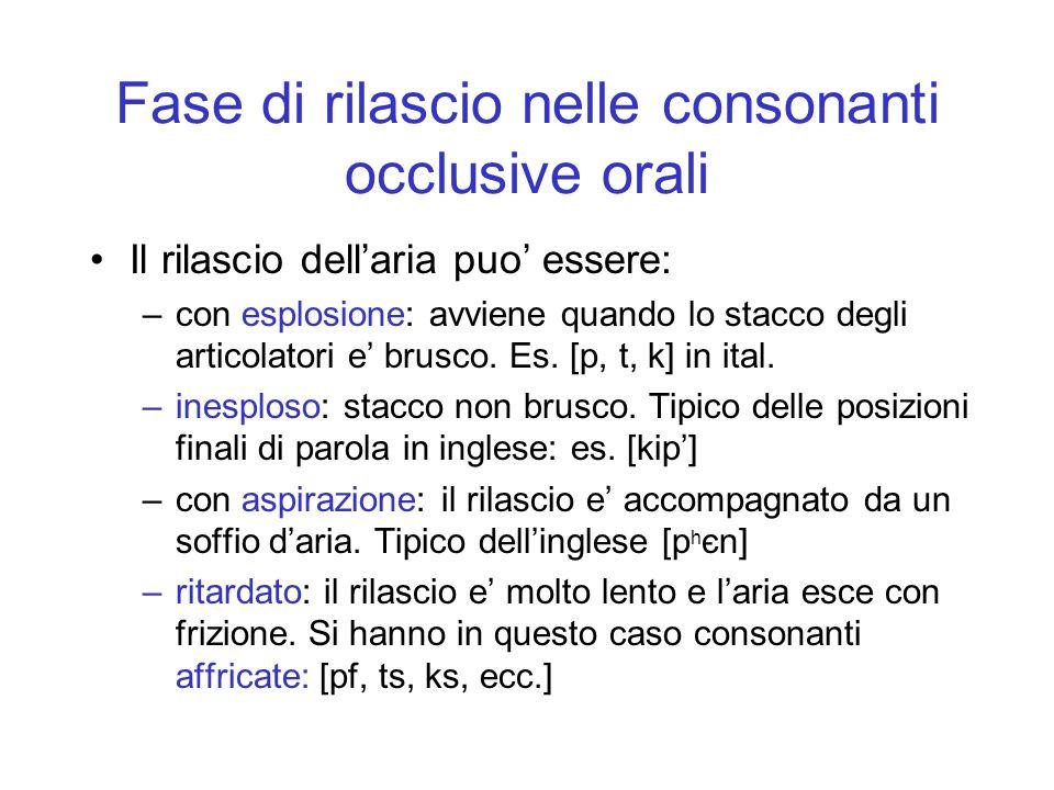 Fase di rilascio nelle consonanti occlusive orali
