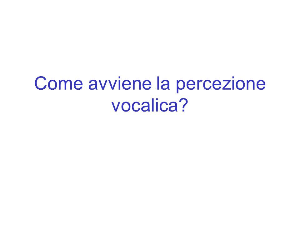 Come avviene la percezione vocalica