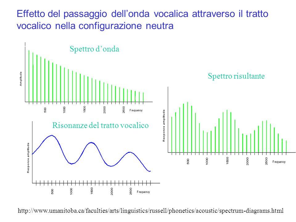 Effetto del passaggio dell'onda vocalica attraverso il tratto vocalico nella configurazione neutra