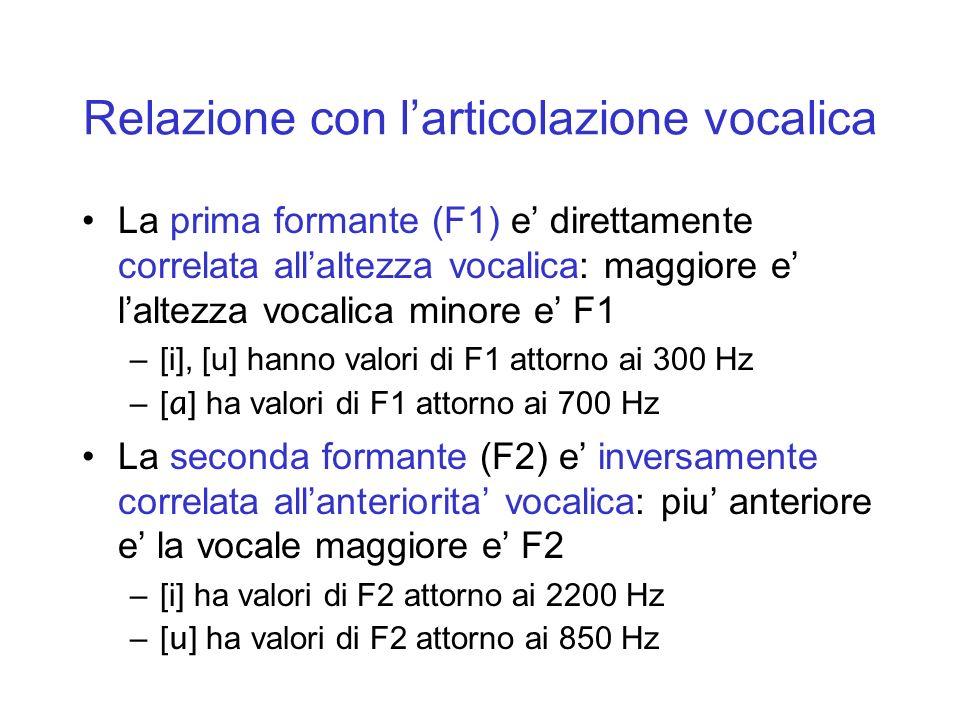 Relazione con l'articolazione vocalica