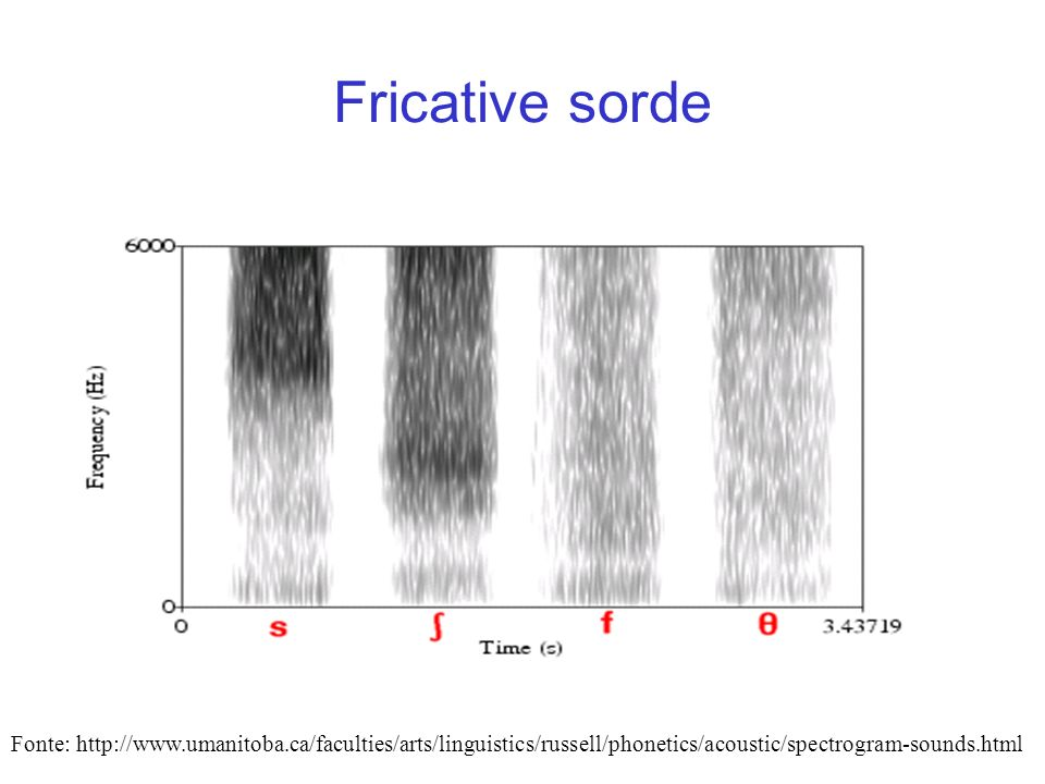 Fricative sorde Fonte: http://www.umanitoba.ca/faculties/arts/linguistics/russell/phonetics/acoustic/spectrogram-sounds.html.