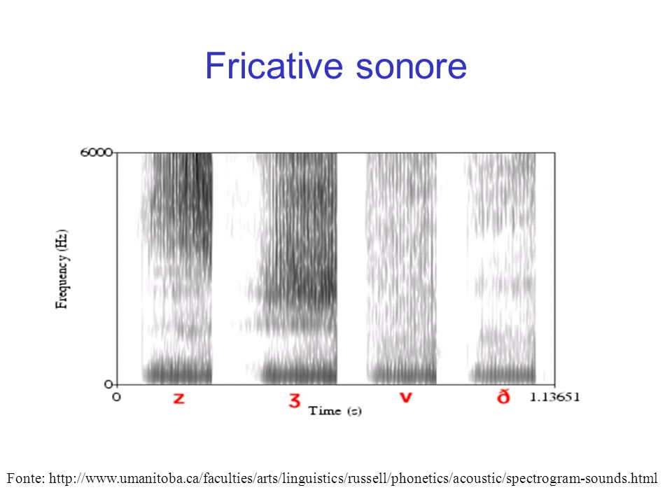 Fricative sonore Fonte: http://www.umanitoba.ca/faculties/arts/linguistics/russell/phonetics/acoustic/spectrogram-sounds.html.