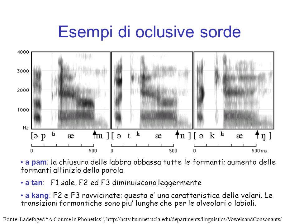 Esempi di oclusive sorde