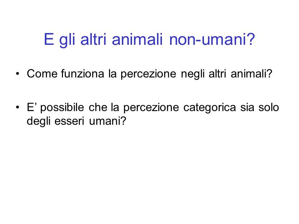 E gli altri animali non-umani