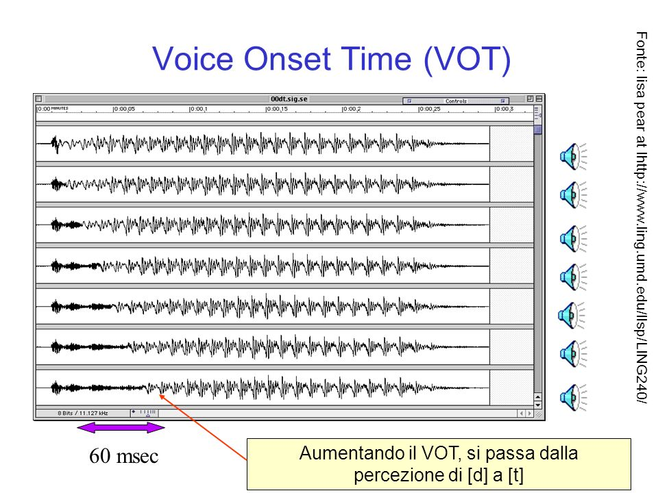 Voice Onset Time (VOT) 60 msec