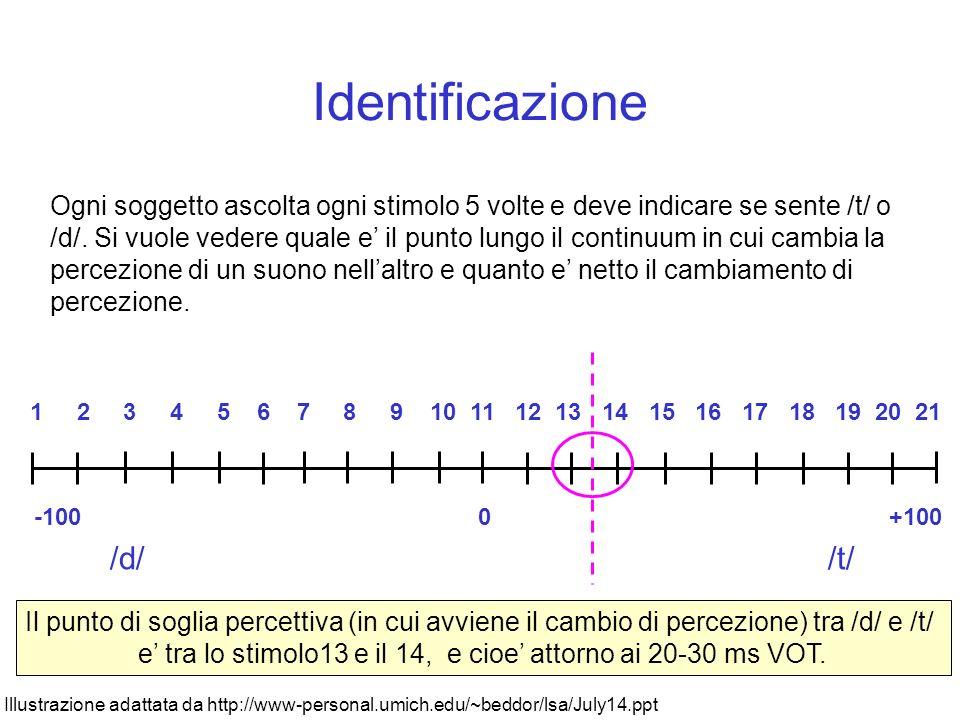 Identificazione /d/ /t/