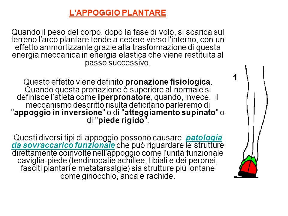 L APPOGGIO PLANTARE