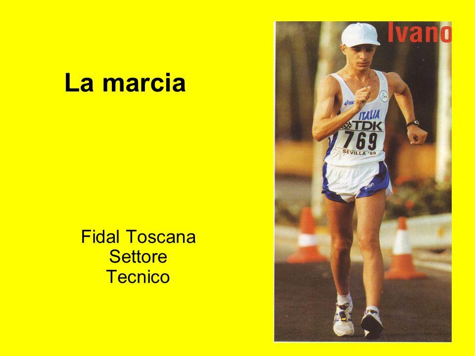 Fidal Toscana Settore Tecnico