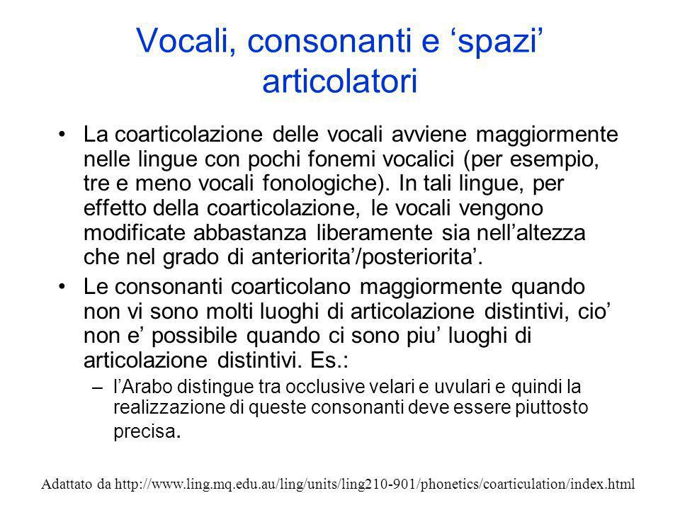 Vocali, consonanti e 'spazi' articolatori