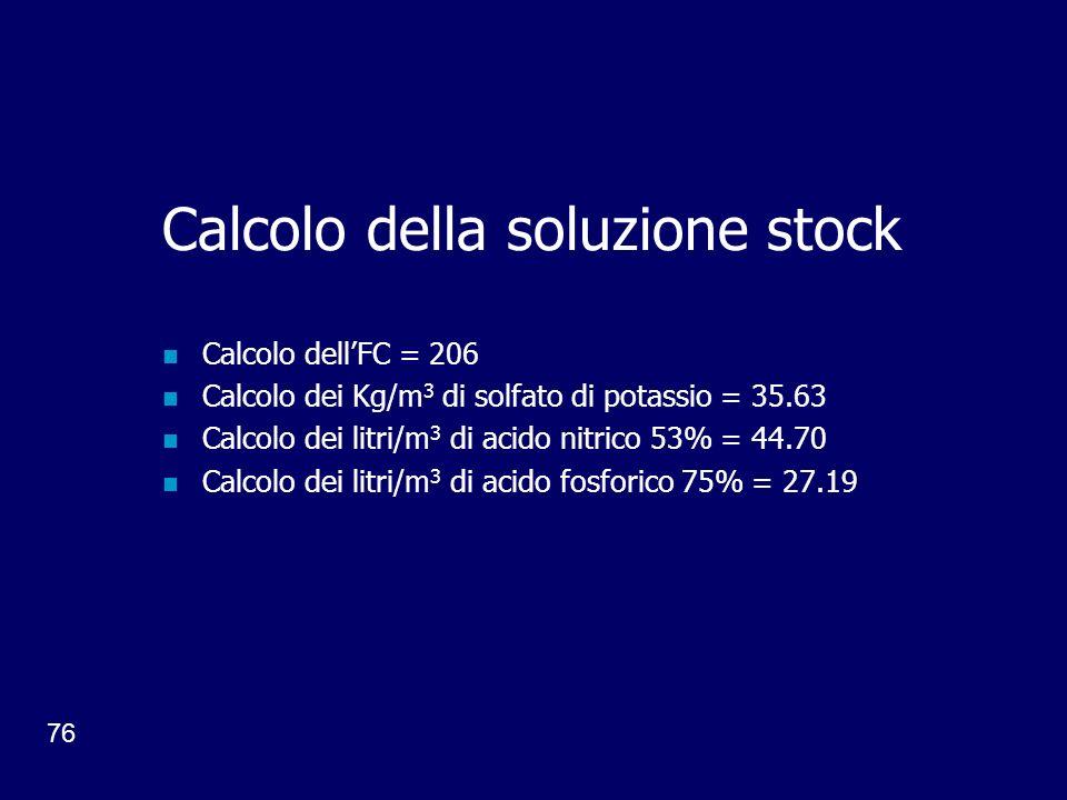 Calcolo della soluzione stock